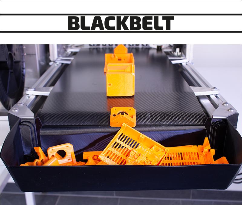 Blackbelt print series